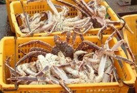 Изменения в УК РФ в части контрабанды биоресурсов